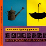 The Wolfgang Press Raintime