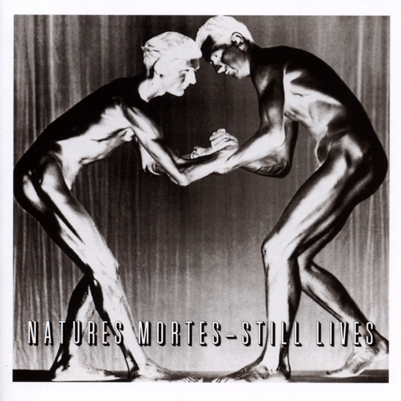 Various - Natures Mortes - Still Lives